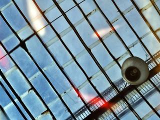 Nino Ferrara_pesci in cielo DSC_0759_low